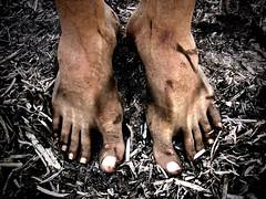 donde el suelo es ceniza (wakalani) Tags: poverty art feet fire brother clayton olympus ashes pies vistas fuego charming bodyparts zone pobreza cenizas incendioforestal canalzone olympusfe120 mes032006 13demarzo fuegoenclayton masvistas utatafeature