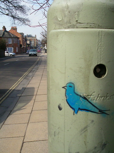Blue Bird by R_rose, on Flickr