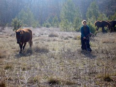 Jana en het paard (5) (Louis Debruyne) Tags: 2006 jana mayne krokus