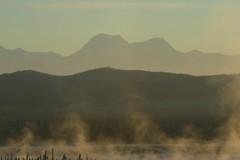 IMG_4276.JPG (jraiii) Tags: nature alaska deltajunction northpole