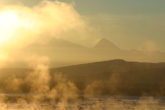 IMG_4277.JPG (jraiii) Tags: nature alaska deltajunction northpole