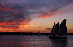 Another Newport Sunset (` Toshio ') Tags: sunset tag3 taggedout sailboat boat tag2 sailing tag1 topc rhodeisland newport sail tallship 1on1 toshio thecontinuum bluelist worldthroughmyeyes neninvite heritage2011
