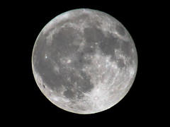 Paschal  Full Moon (Padrone) Tags: moon beautiful fullmoon explore 500mm interestingness493 i500