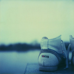 m19-polaroid1 (lady-b) Tags: