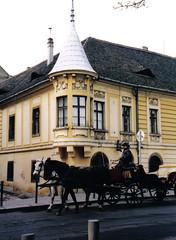 52 Palazzo Kapisztory, Vizivaros (*DaniGanz*) Tags: horses building europe hungary budapest palazzo cavalli ungheria vizivaros calesse palazzokapisztory kapisztory daniganz anticando