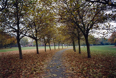 Wallasey Central Park (MichaelWJones) Tags: park autumn film scan analogue olympusxa2 1990s bymike wallasey merseyside
