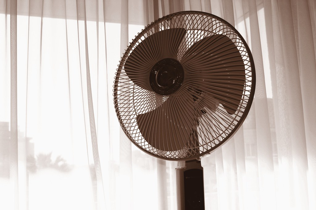 Fan by Leonid Mamchenkov, on Flickr