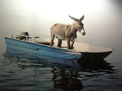 Balthazar! (sorayacita) Tags: water animal sailboat au mary donkey floating canoe bresson hasard auhasardbalthazar