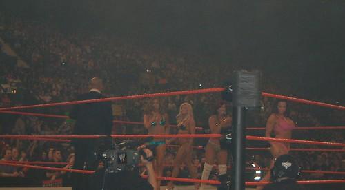WWE Divas Bikini