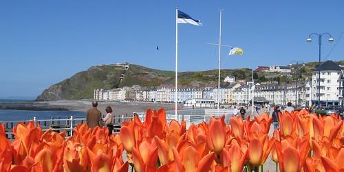 Aberystwyth Promenade in April