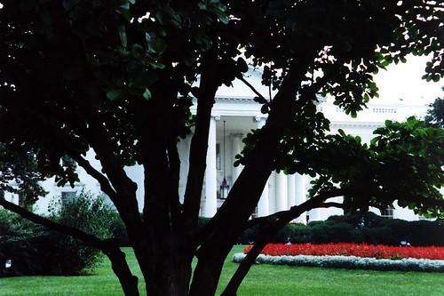 DC: White House - North Portico
