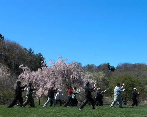 World Tai Chi Day 4.29.06 by DolfinDans, on Flickr