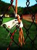 nudismo (wakalani) Tags: macro verde green closeup fence lomo olympus knot saturation cerca vistas paraiso nudismo nudo canalzone enredo zonadelcanal wakalani masvistas utatafeature