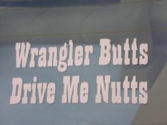 wrangler butts drive me nutts (maura) Tags: seattle sea car washington butt butts decal wrangler seattlewashington wranglerbuttsdrivemenutts