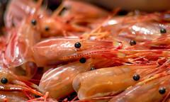 Shrimp Heads (disneymike) Tags: california food nikon disne