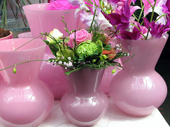 pink! (Coanri/Rita) Tags: pink flower shopping vases roze thinkpink passionatelypinkforthecure