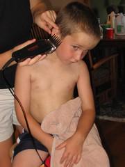 f2.sized (haircutsz) Tags: boy haircut man buzz cut guard crew shave clipper butch induction nape