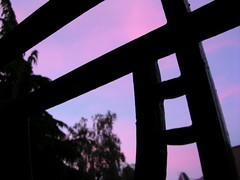 Dawn at the Balcony / L'aube au balcon (vemma) Tags: dawn purple balcony abstructure purplewednesday fcsetsrises