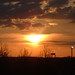 Sunset in hatfield