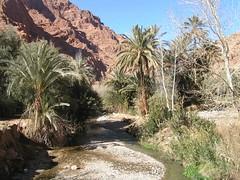 Morocco 2006 032 (hassanafradan) Tags: atlasmountains morocco