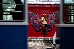 butterfly, tram version (Dreamer7112) Tags: blue windows red motion 20d window fashion shop butterfly schweiz switzerland store europe suisse suiza canon20d zurich moda favorites tram schaufenster canoneos20d views storefront shops shopwindow storefronts zrich stores juxtaposition svizzera vetrina trams zuerich brava redblue shopfront shopwindows eos20d bahnhofstrasse shopfronts zurigo shoppingwindow maxmagazine grieder vbz shoppingwindows