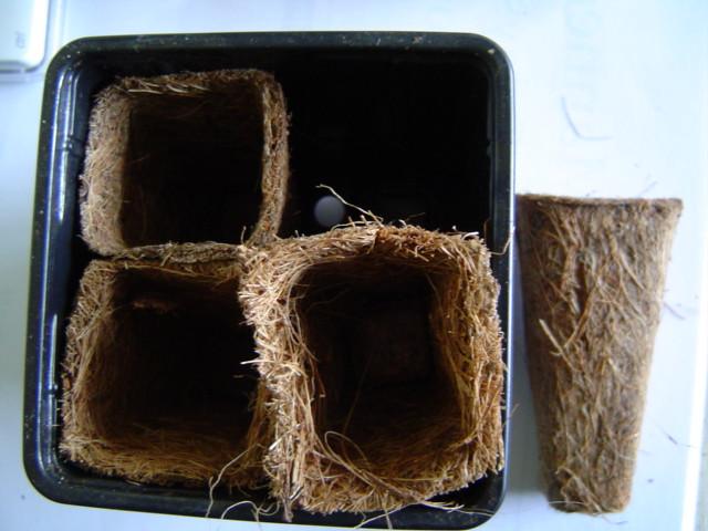 Empty coir pots