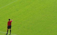 Auf weiter Flur / Referee - by CottonIJoe
