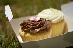 chocolate & lemon delights (gabo_) Tags: food grass dessert cupcakes yummy lemon dof sweet good chocolate sean cupcake vanilla boxed emeryville frosting