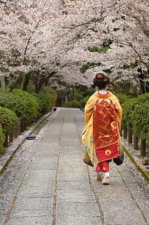 Walk like a Maiko