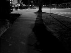 夜深人靜(三)之影