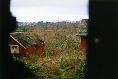 barn view (world_of_noise) Tags: old plants color film overgrown barn country brush beckys forestgrove pentaxmesupe