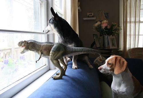 Dinosaurio T-Rex esperando al cartero