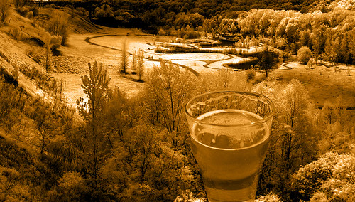 A beer-colored, sepia-tone-like picture of glass of beer overlooking a valley