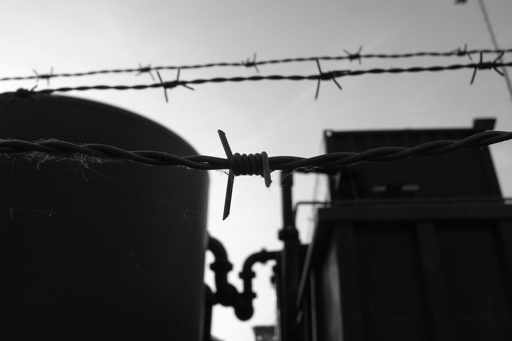 barbed wire bw