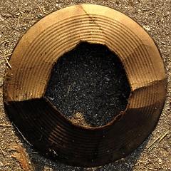 squared circle hat brim (zen) Tags: hat garden hats neighborhood cardboard squaredcircle christophers ridges westasheville 20060614