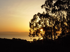 San Francisco Bay Sunrise (Franco Folini) Tags: sf sanfrancisco california morning usa sun sunrise photography dawn bay us foto alba sony sanfranciscobay fotografia sole mattina sanbrunomountain dscf707 albeggiare francofolini albeggio baiadisanfrancisco folini