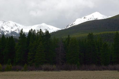 Kawuneeche Valley Scenery