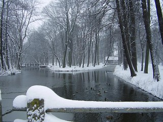 park in Winter morning