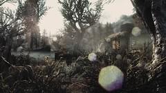 2015-06-04_00022 (itchisansan) Tags: homes house player 101 tiny swamp enb abodes elianora myrheim nexusmods purpuuri