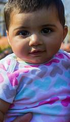 Playful (jaspreetk92) Tags: baby cute canon bigeyes innocent pakistani chubby t3i