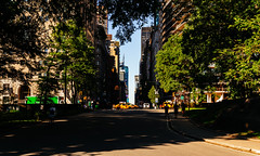Central Park Morning (RomanK Photography) Tags: street nyc newyorkcity morning summer centralpark streetphotography streettogs