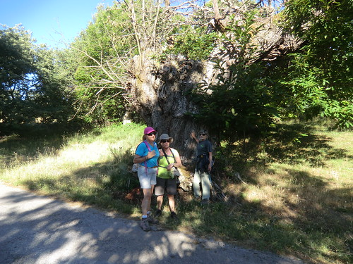 Fotografía Paquita Valdi Marcha 391 27 y 28 de Junio Parque Natural de la Encina de Lastra Ourense (12)