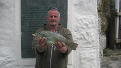 "Picture of Gary Wylde with the seasons best Ballan Wrasse • <a style=""font-size:0.8em;"" href=""http://www.flickr.com/photos/113772263@N05/19469488232/"" target=""_blank"">View on Flickr</a>"