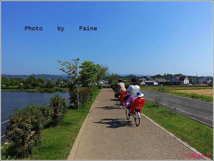 和歌山大池遊園-平池綠地公園 (40).JPG