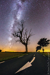 which way to the Milky way ?