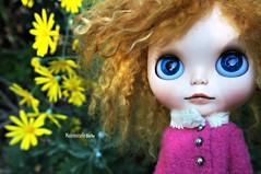 Stargazing (mademoiselleblythe) Tags: blythe doll zaloa custom reroot stellina