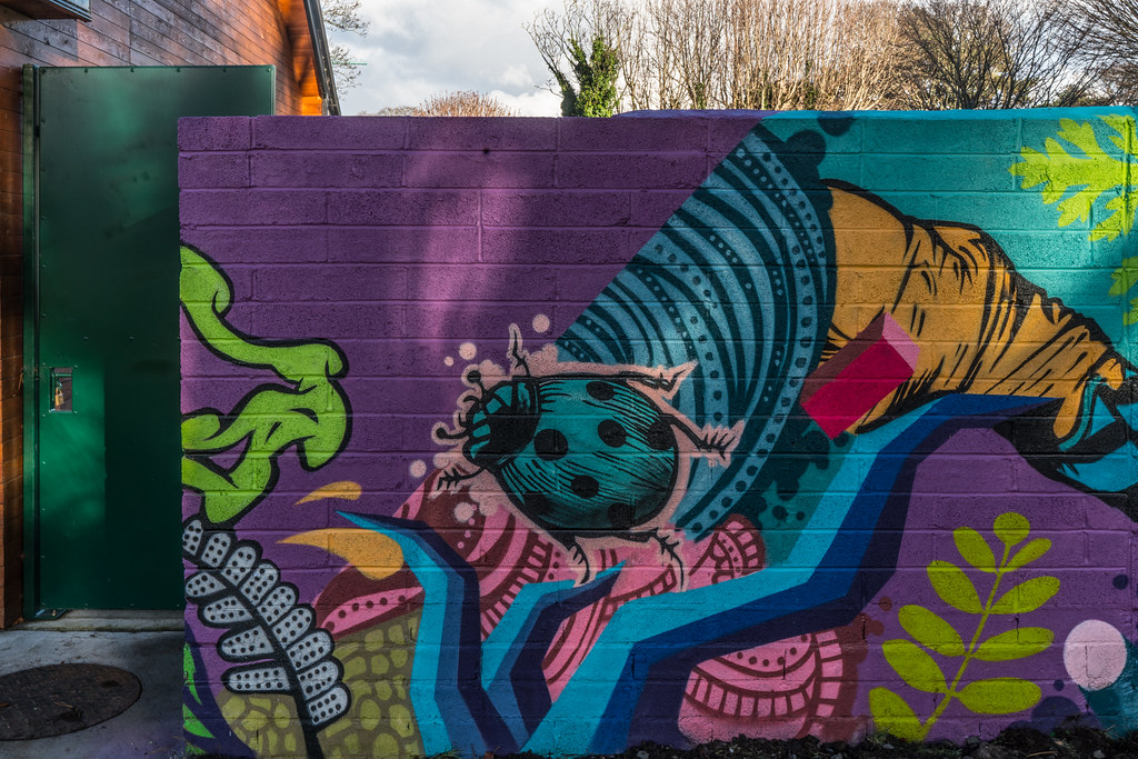 NEW STREET ART AND NEW TEAROOMS [HERBERT PARK DUBLIN]-124048