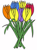 tulips (69eclipse) Tags: tulips adobeillustrator flowers