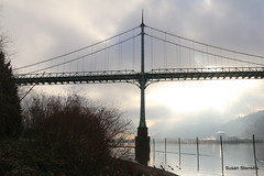 St. Johns Bridge (Susan Stienstra) Tags: suspensionbridge bridge oregon pacificnorthwest willametteriver