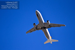 Airplanes Series #03 (Read description for details) (Mark Photography 2017) Tags: aerofoil aeroplane aileron air aircraft airline airplane angle belly blue body bottom color colour comercial composition craft crafts deep detail elevator engine environmental exterior flaps floor focus for frame framing freeze freight full fuselage gear gray horizontal jet landing landscape level life light lighting motion natural nose orientation outdoor parts passengers plane services setting shade sky skyline stabilizer style tail time transport transportation travel traveling turbine vehicle vertical view weather white wing wingletartscraftsphotographysettingskylineexterioroutdoorphotogenrestyletypelifetravelorientationlandscapemotionfreezeframelightingnaturallightframingcompositionenvironmentaldetailfullbodyformathorizontalfocusdeepangleview